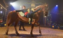 Paardenact
